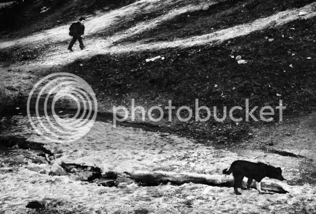 Jacob Au Sobol Leica M Monochrome