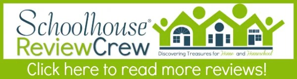 Literature Study Guides from a Christian Perspective {Progeny Press Review}