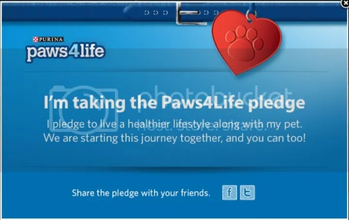 photo Paws4Life2_zpsbf0bb81e.jpg