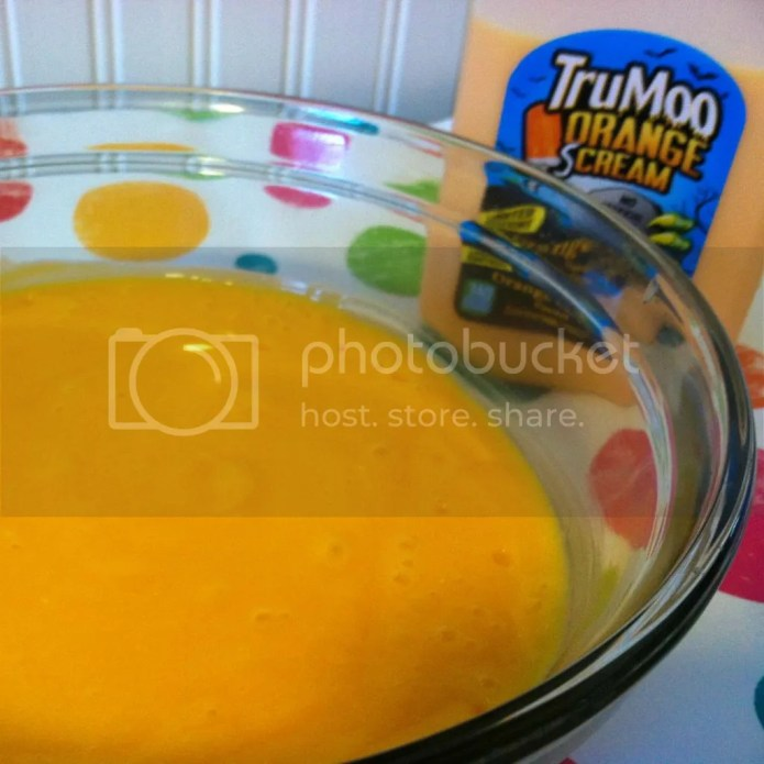 TruMoo Orange Scream Pudding