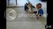 Video Bayi Lucu - Anjing Penggoda