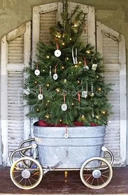christmas tree in a bucket
