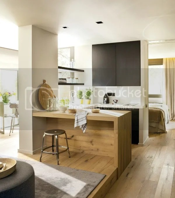 600_sq_ft_apartment_kitchen