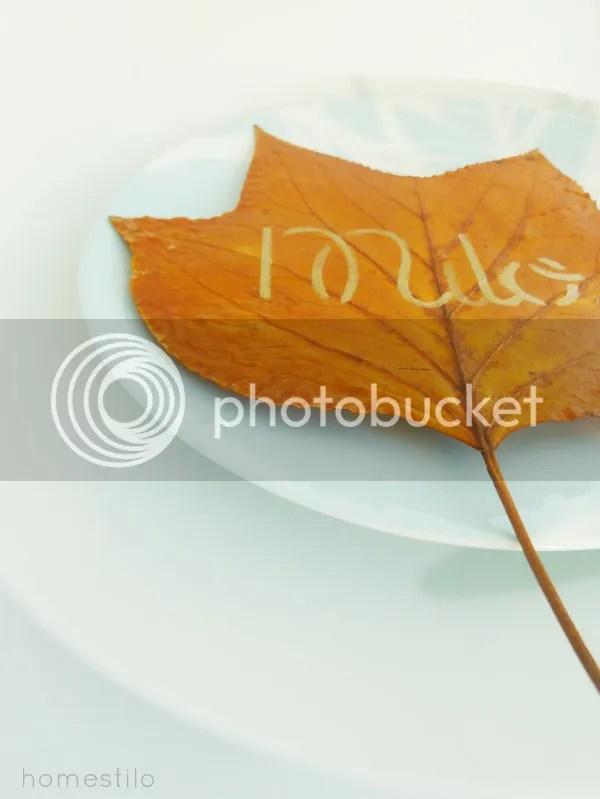 photo diy_place_setting_plate_angle.jpg