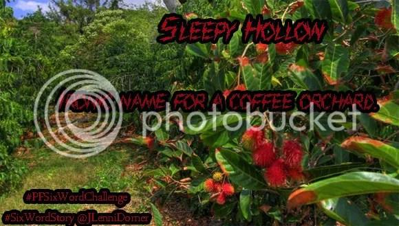 Sleepy Hollow #coffee #PFSixWordChallenge #SixWordStory @JLenniDorner