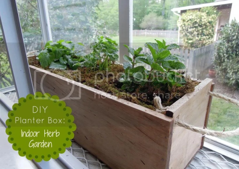 diy planter box herb garden