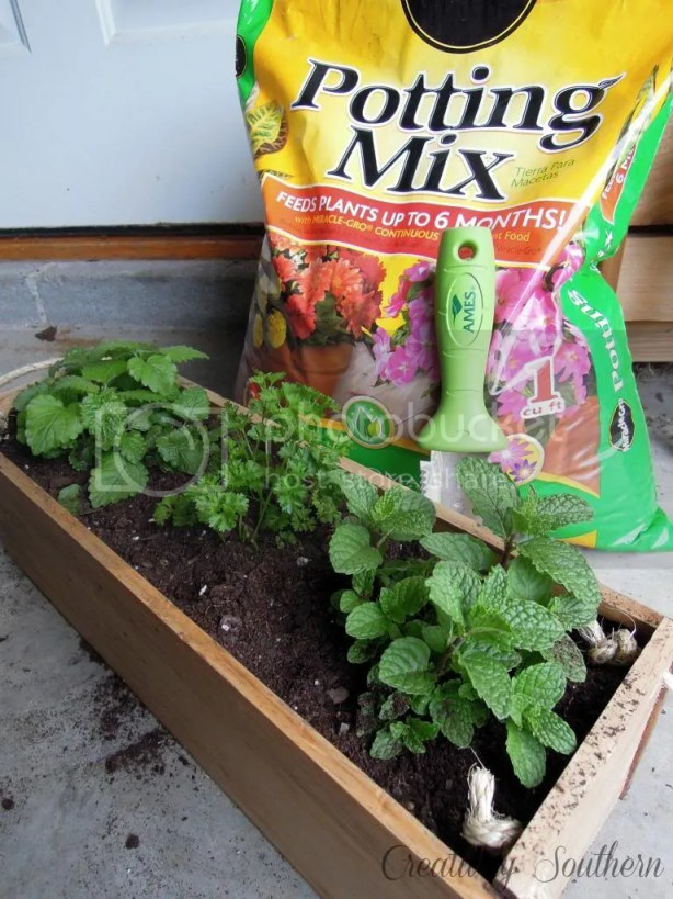 diy planter box gro project