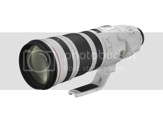 EF 200-400mm f4/L IS 1.4x