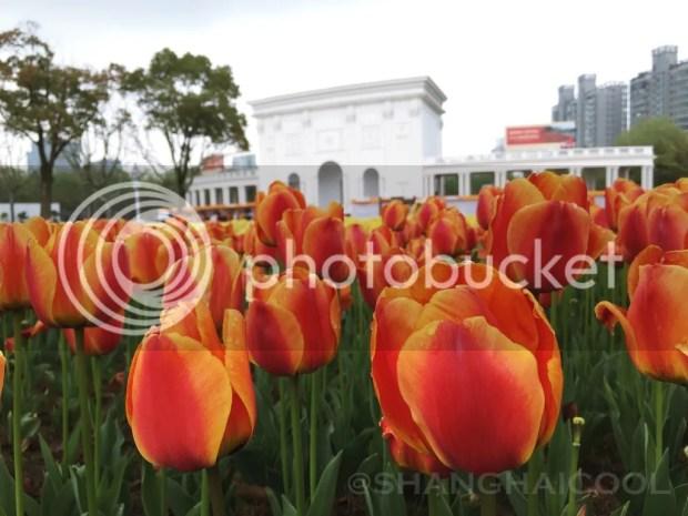 photo daning-shanghai10_zpsqy2jydvz.jpg