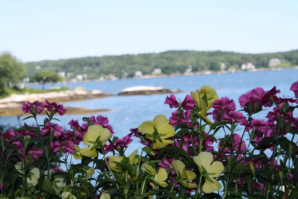 My favorite vacation photos - Boothbay Harbor, Maine