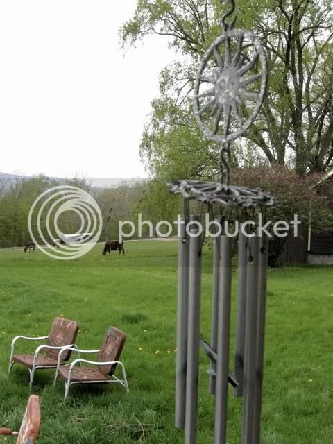 oak hill backyard
