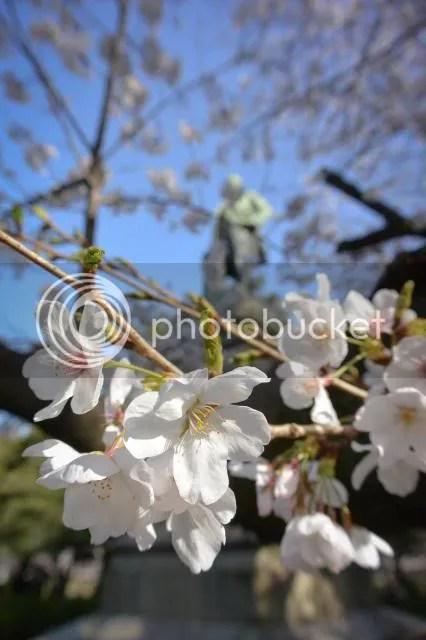 photo SK28of1.jpg