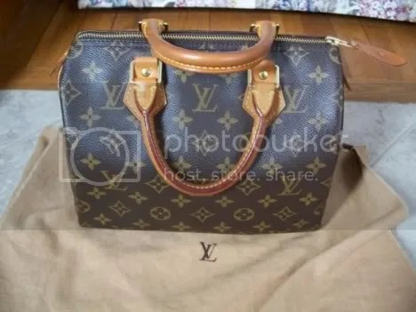 Louis Vuitton Monogram Speedy with Full Patina