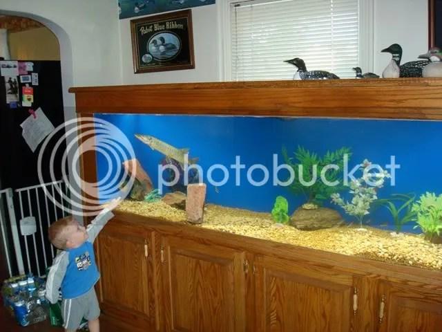 220 gallon aquarium aquariums for sale 2017 fish tank for Fish aquarium for sale