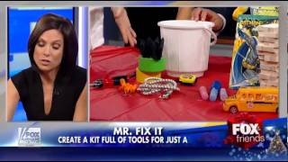 Fox & Friends Megan Meany Dollar Store Buys