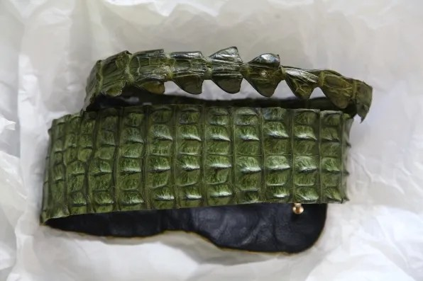 Crocodile leather belt from South Africa