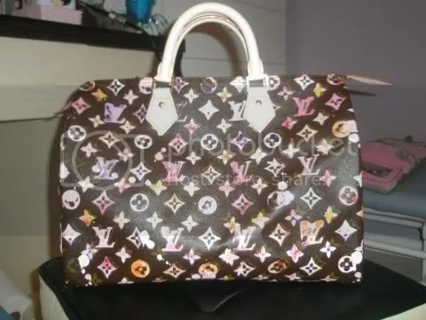 Louis Vuitton Brown Watercolor Speedy