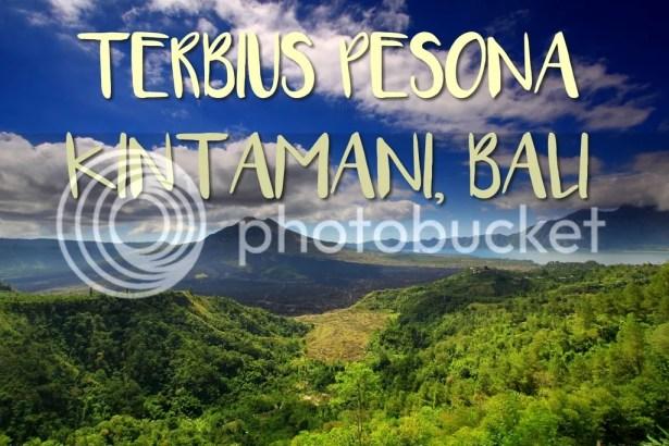 Terbius Pesona Kintamani, Bali.jpg