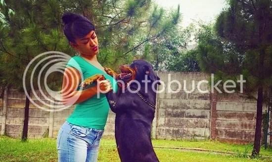 julia perez anjing
