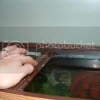 55 gallon fish tank brace - Another possible way to fix a brokencross brace? 3/1/11