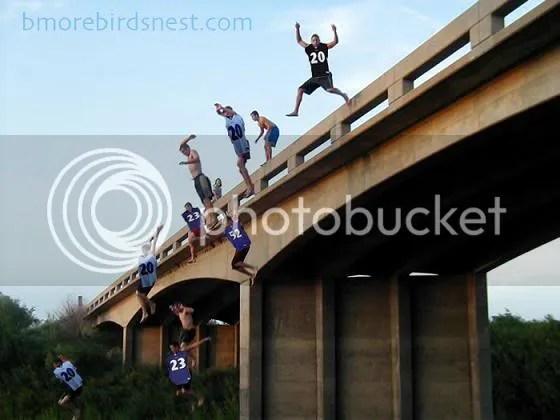 Ravens Fans Jump