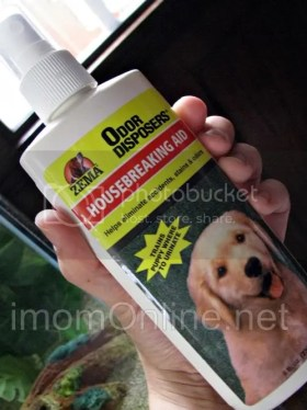 how to housebreak dogs housebreaking aid