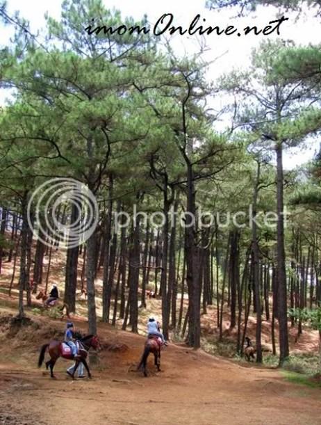 Horseback riding in Baguio Camp John Hay