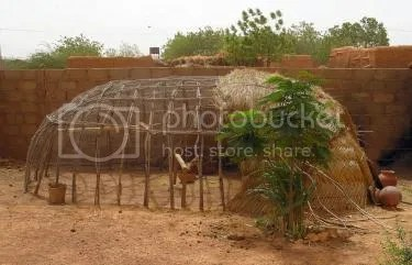 unusual backyard chicken coop made from natural materials found in africa