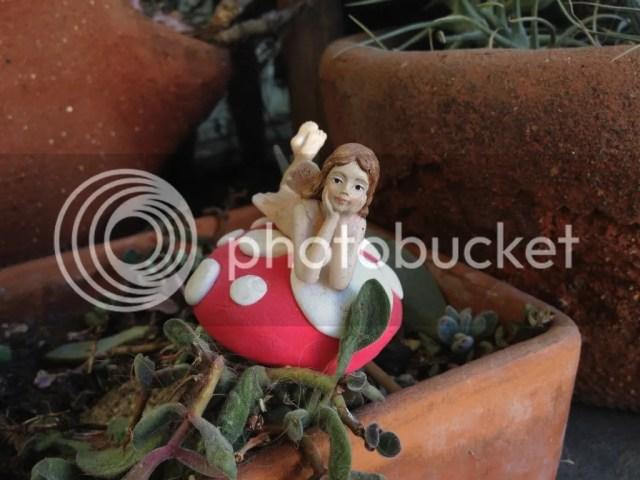 Fairy gardening garden mushroom red