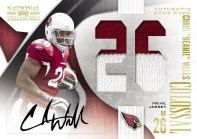 Chris Beanie Wells 2009 National Treasures Colossal Auto Patch