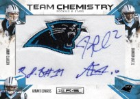 2010 Rookies &  Stars Panthers