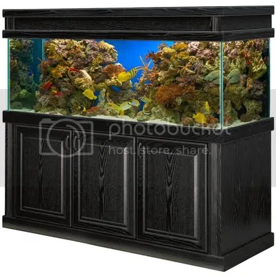 180 gallon tank, stand, and canopy for sale   Reef Central Online
