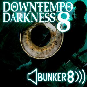 Bunker Digital Labs Downtempo Darkness.8