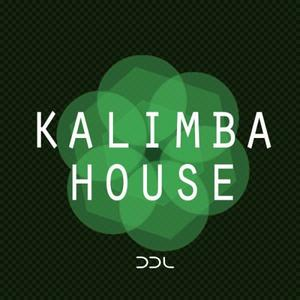 Deep Data Loops Kalimba House