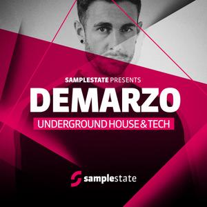 Samplestate Demarzo Underground House and Tech (MULTiFORMAT)