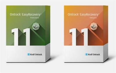 Ontrack EasyRecovery Professional Enterprise 11.5.0.3