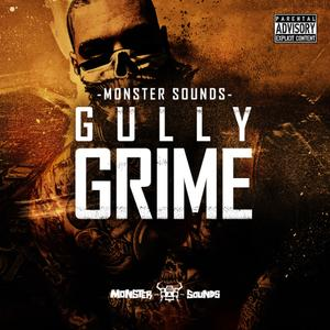 Monster Sounds Gully Grime-MULTiFORMAT