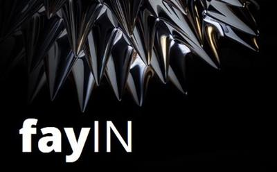 FayTec FayIN v2.4.1 for After Effects CC  CC.2014 (WinMac)