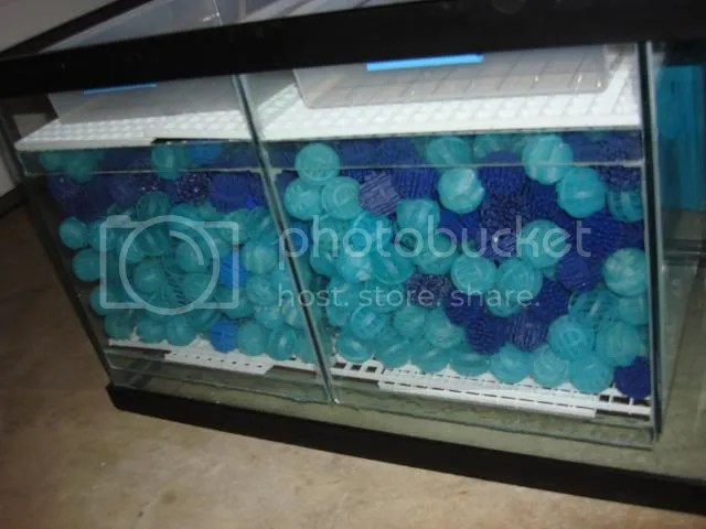 : **** 180 Gallon Visio Tank with Custom Stand and W/D for $400