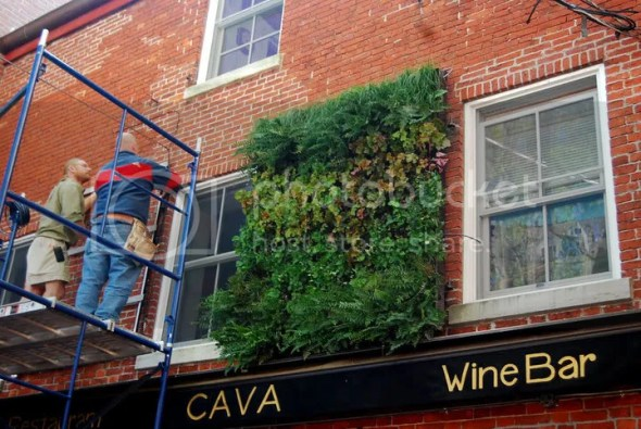 Cava Tapas and Wine Bar Vertical Garden