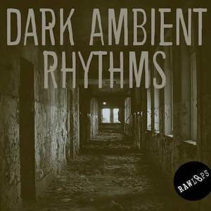 Raw Loops Dark Ambient Rhythms.WAV