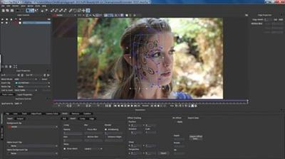 Imagineer Systems Mocha Pro OFX  Adobe  Avid Plugin v5.1.1 (WinMacLinx)