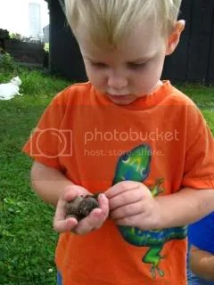 Hes probably more serious about finding things in nature than his big brother and sister!