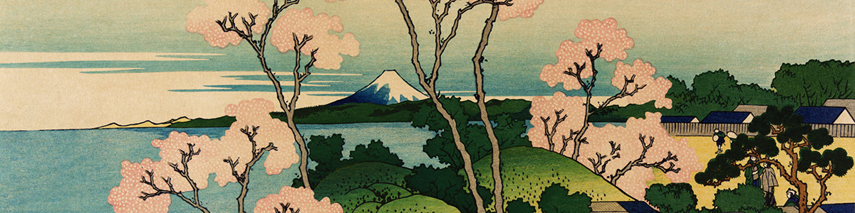 What is haiku Hana Fujimoto Emiko Miyashita