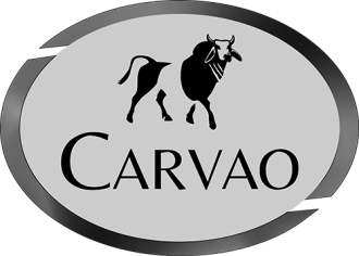 Carvao-Brazilian-Steakhouse-FlowerMound-TX-LakesideDFW-Thanksgiving-FoodieFriday-JayMarksRealEstate.png