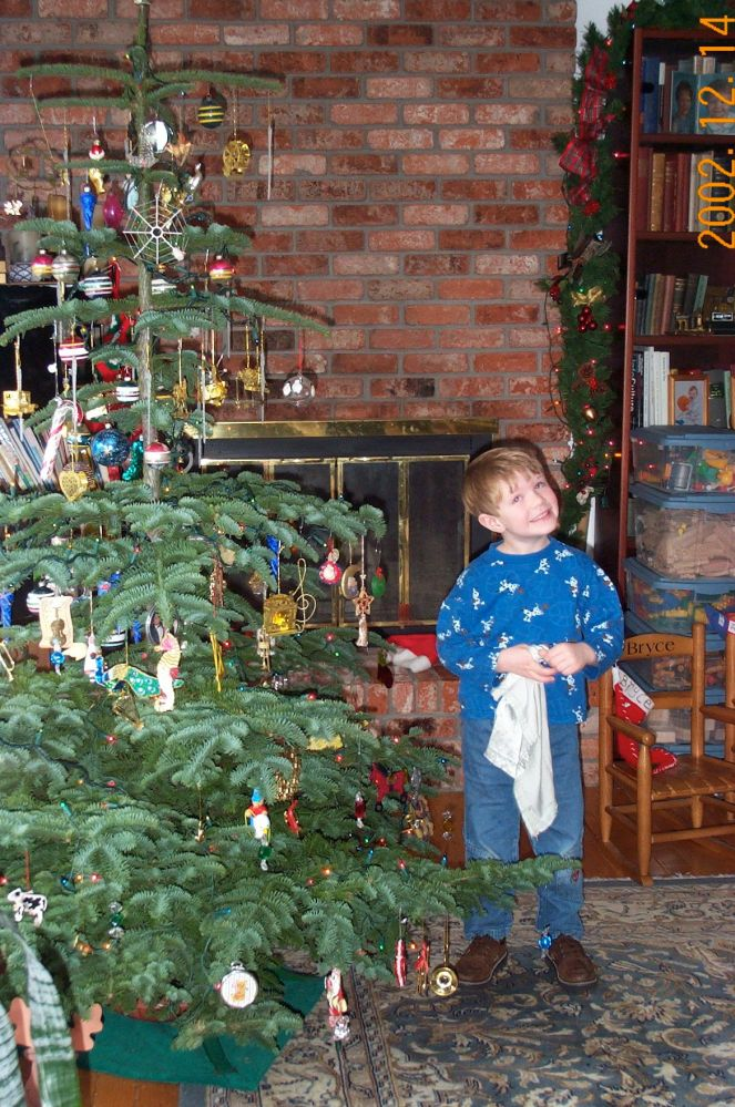 2002 Tree with Jasper