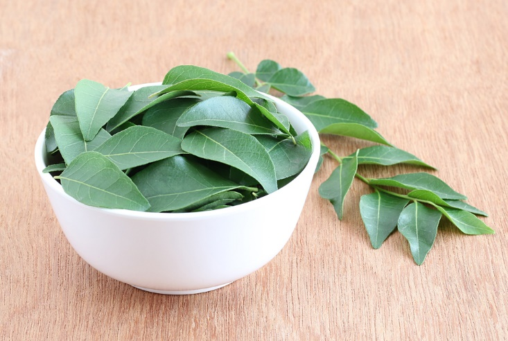 hairfall_curry_leaves
