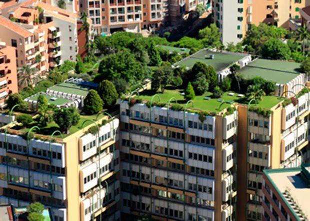 Qu son los techos verdes pros y contras casas ecol gicas for Techos y paredes verdes
