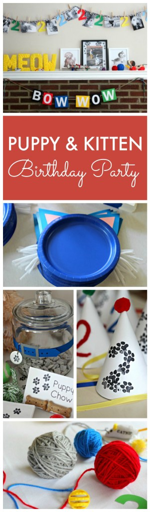 Puppy and Kitten Theme Birthday Party Ideas