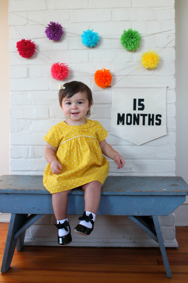 15 months, chronicles of baby's second year